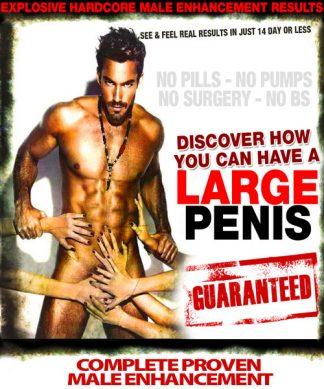 1 Large Penis