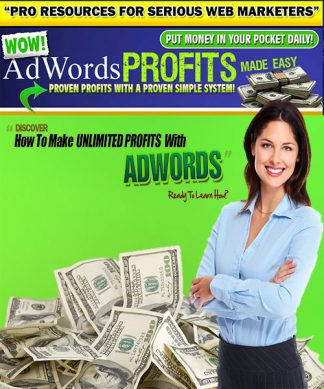Adwords Profits Made Easy